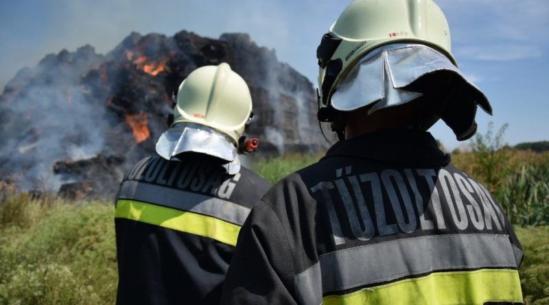 Dolgoznak a tűzoltók Dunakömlődnél. Fotó: Katasztrófavédelem