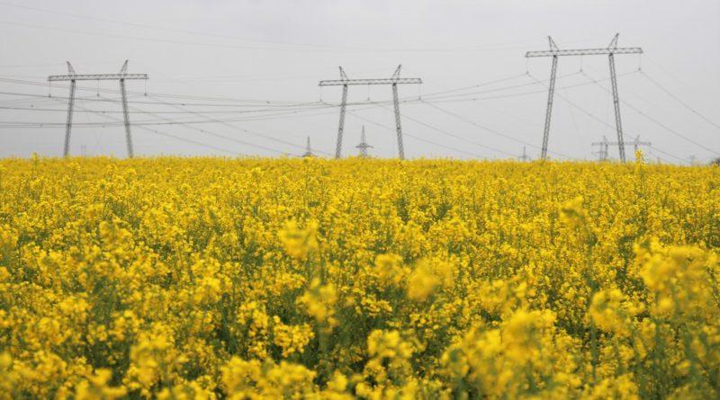 Energiahatékonyságra, új erőművi kapacitások kiépítésére lesz szükség. Fotó: Vida Tünde