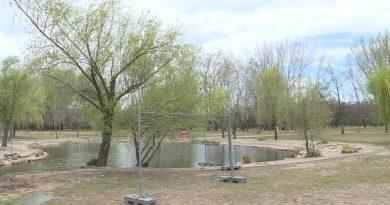 Ütemezetten zajlanak a tavaszi kertészeti munkák