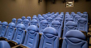 Концерты и кино