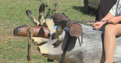 Felavatták a négyökrös szekér szoborkompozíciót Uzdon